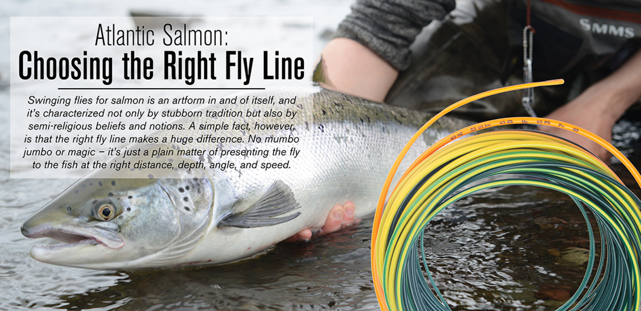 Choosing the Right Fly Line